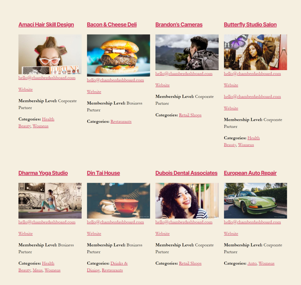 Business Directory listings with Twenty Twenty theme using the full width layout